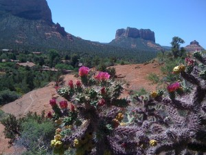 The surrounding beauty of Sedona and El Portal Sedona Hotel