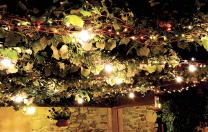 Twinkling Lights Entwined with Grape Vines of El Portal Sedona's Private Courtyard