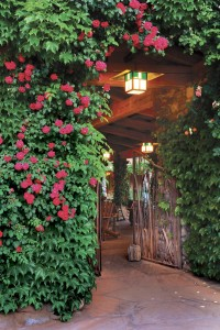 Welcome to your Sedona Dream Retreat at El Portal Sedona Hotel