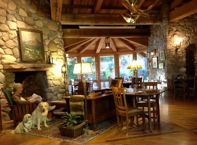 Best Dog Friendly Hotel In Sedona