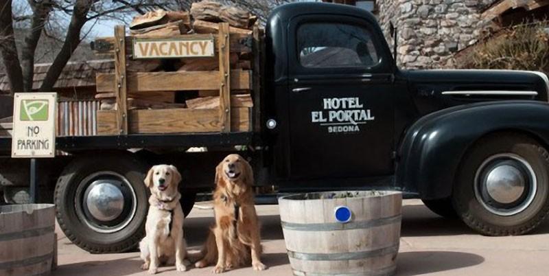 Pet Friendly Sedona Hotel