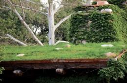 Rooftop Garden at El Portal Sedona Hotel