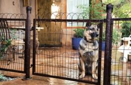 gallery-pet-friendly-patio