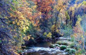 Red Rock State Park - El Portal Sedona