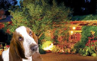 El Portal Sedona Hotel - Pet Friendly Hotel