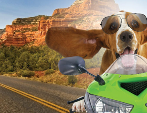 Things to do in Sedona – Summer 2019