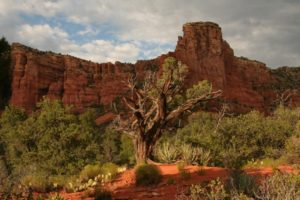 Arizona State Parks - El Portal Sedona Hotel