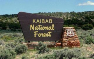 Kaibab National Forest Arizona - El Portal Sedona Hotel