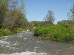 Kayaking the Verde River - El Portal Sedona Hotel